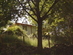 Camping de Belos Chalet Moréa calme ombragé