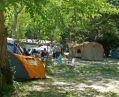 Emplacements ombragés du camping