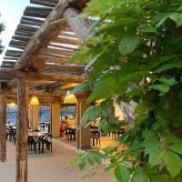La terrasse du bar-resto