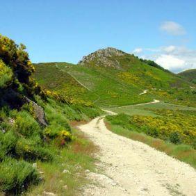 Un chemin dans le Parc Régional des Monts d'Ardèche